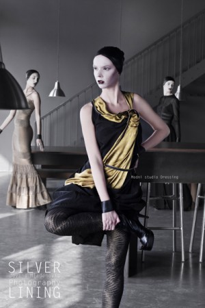 Reflection for Dressing F/W 2012